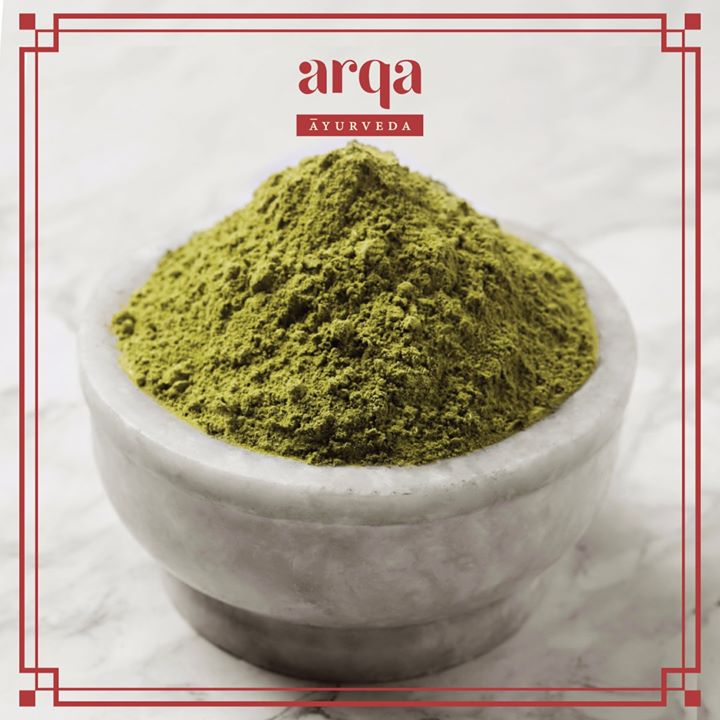 "#ArqaAyurveda Recommends: Moringa Powder or the ""Miracle Tree""  Light, dry, sharp and fluid – this antioxidant powerhouse is called sigru in historic Ayurvedic scripts for its ability to move like an arrow and deeply penetrate tissues. What's more, #moringa is both a detoxifying agent as well as a tonic. After cleansing, the plant has the power to strengthen the heart and blood!  Tap into its rejuvenating potency, by adding a teaspoon of moringa powder to your next smoothie or shake, or simply consume with a teaspoon of honey for its metabolic benefits.   Discover #moringapowder and more Ayurvedic essentials at a Foodhall near you.  #ForTheLoveofHerbs #FoodhallIndia #ArqaAyurveda #AyurvedicSpices #HealthyLiving #Ayurveda"