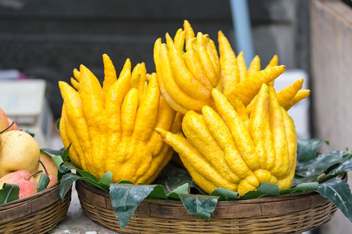 #FoodhallLoves – Buddha's hand!  Resembling a lemon gone wild, Buddha's Hand is a multi-fingered citron with magical qualities aplenty! Unlike a lemon or an orange, it's free of juice and pulp, but is entirely edible, with a sweet, lemon-blossom fragrance.  What's more, its spongy pith is mild in taste without any bitterness, opening up a world of creative possibilities for cooking with this distinctive fruit! Shave thin slices of Buddha's Hand over your salad, tofu or fish. Whip up a candied citrus peel to elevate your pickles, infusions, preserves; or use the perfumed zest of Buddha's Hand to make scented sugar, flavoured salt or to add a lift to mundane veggies and baked goods!  The best part? Buddha's Hand can command pride of place on your table as an aromatic air freshener, a dining table centrepiece or even a conversation starter at your next dinner party! #ForTheLoveofSomethingNew, discover Buddha's Hand at a Foodhall near you!  #FoodhallIndia #ForTheLoveofFood #BuddhasHand #CitrusFruit #CreativeCooking #CreativeRecipes #SeasonalFruits #SeasonalProduce