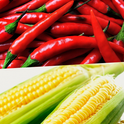 Corn & chilli peppers form the base of Mexican food. #ImportantIngredients