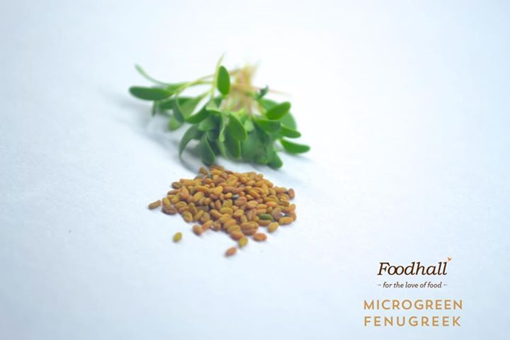 For the freshest taste sensation and gourmet touch to your culinary creations, browse an exclusive variety of microgreens by Chef Grown Produce available at Foodhall @  Palladium Mumbai
