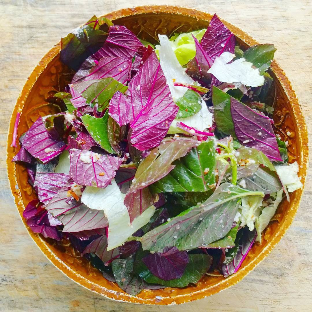 Introduce your salads to something new 🥗 Switch things up like Aakanksha Agarwal & add colour with Red Amaranth leaves! What do you think? https://t.co/qRE3vZGXRG